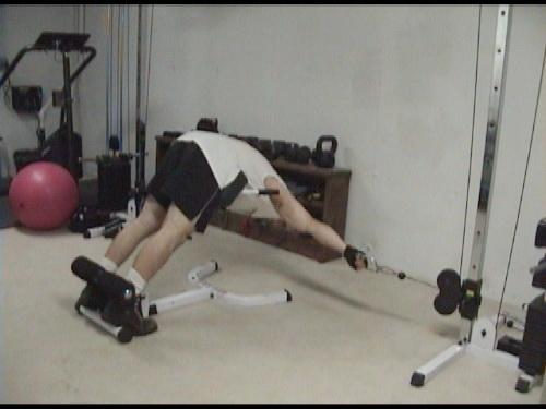 Cable Extension Exercise : One arm cable back extensions for lower lateral